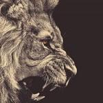 3月のライオンの意味とは何か?桐山零と宗谷冬司と将棋の神様