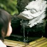 増田康宏四段(将棋)は天才?奨励会の成績や通っていた将棋クラブも紹介!