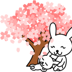 日本平桜マラソン2017の交通規制とコースは?駐車場と高低差とゲストも!