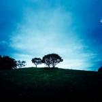 乃木坂46 命は美しい 歌詞 この世の『果て』と『涯』の想像度