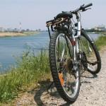 自転車が後方確認しないで事故に遭ったら「権利はOK、義務は?」
