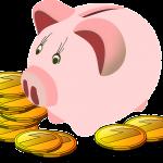 富女子とはどんな意味?貯金や生活費の金額!節約家で20~40代?